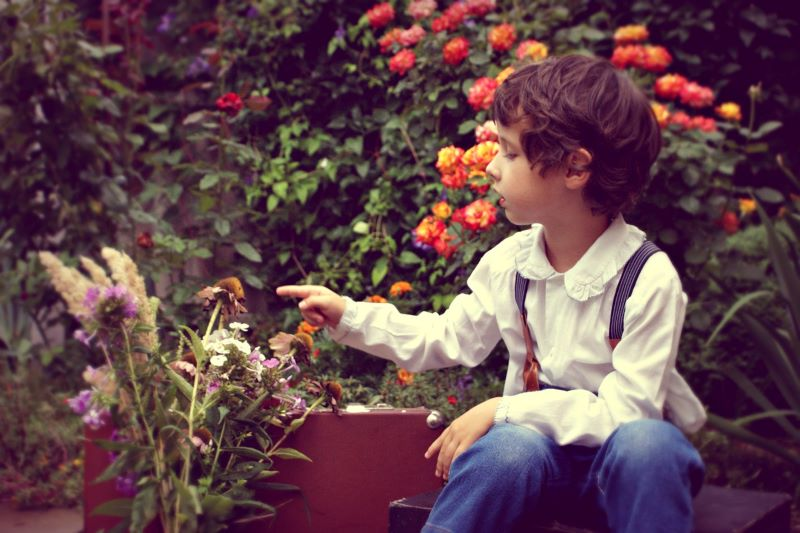 Beneficial tips about apartment gardening with kids