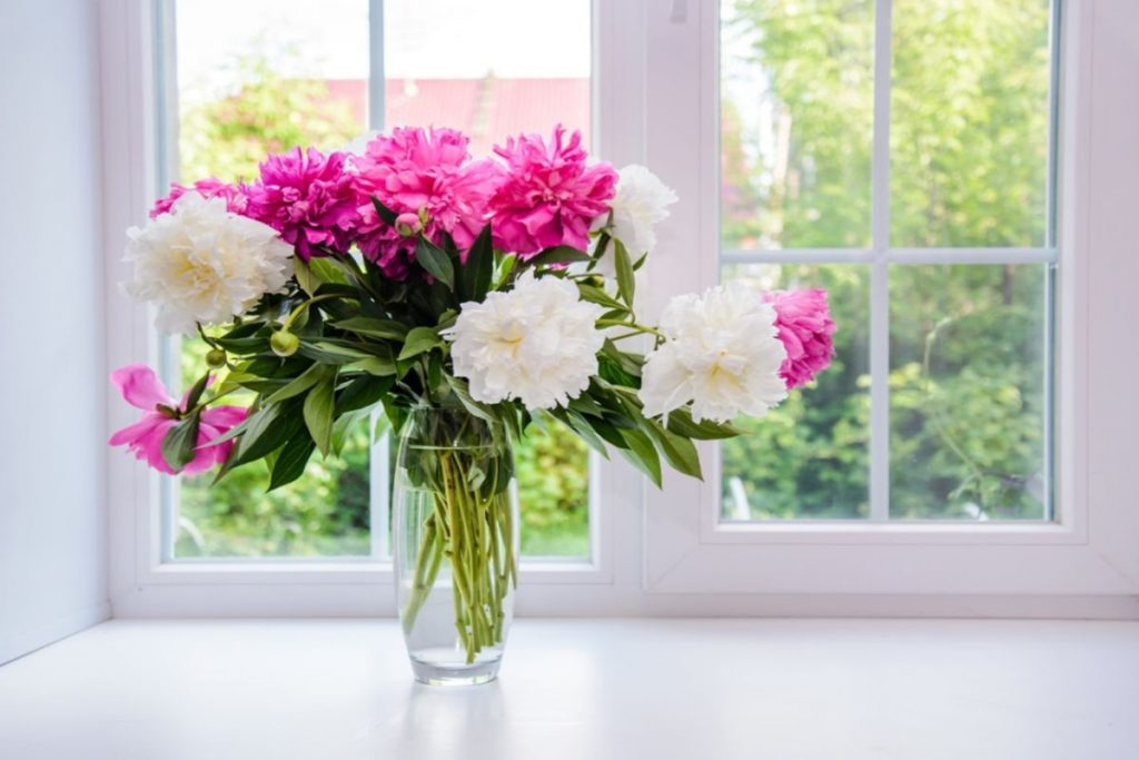 How To Lengthen The Life Of Freshly Cut Flowers
