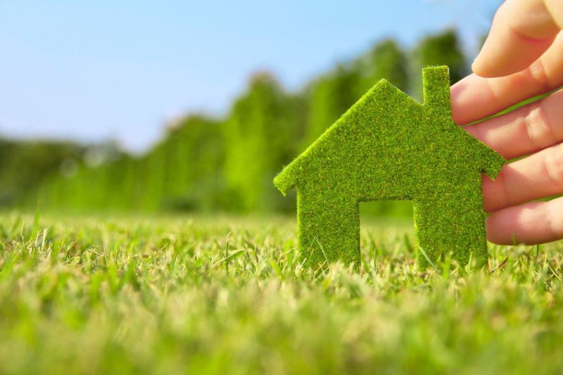 Simple Ways to Create an Eco-friendly Home