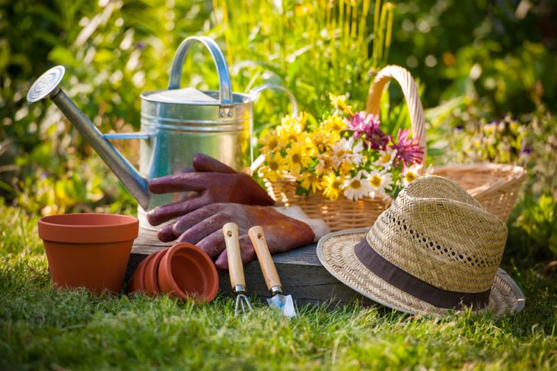 Updating Your Garden Ready for Summer