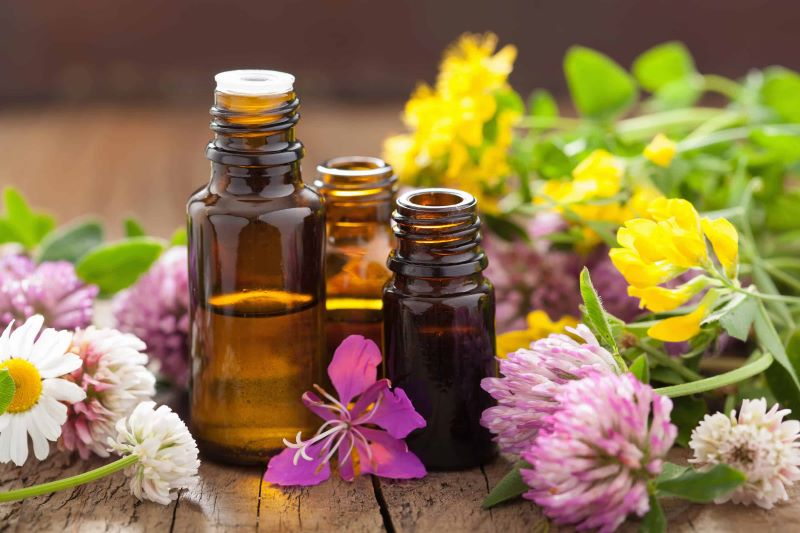 5 Best Essential Oils to Keep Your Home Smelling Good