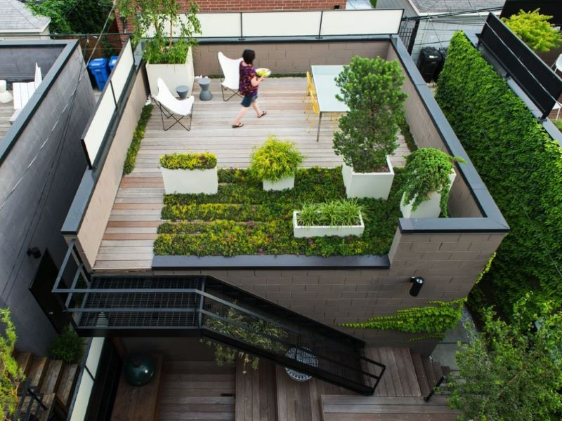 Essential Steps to a Beautiful Green Roof