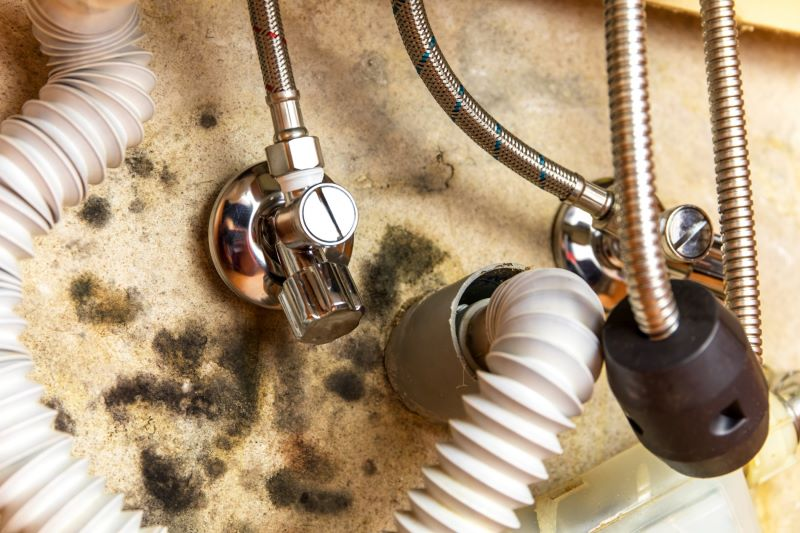 How to Prevent Mold with Proper Plumbing