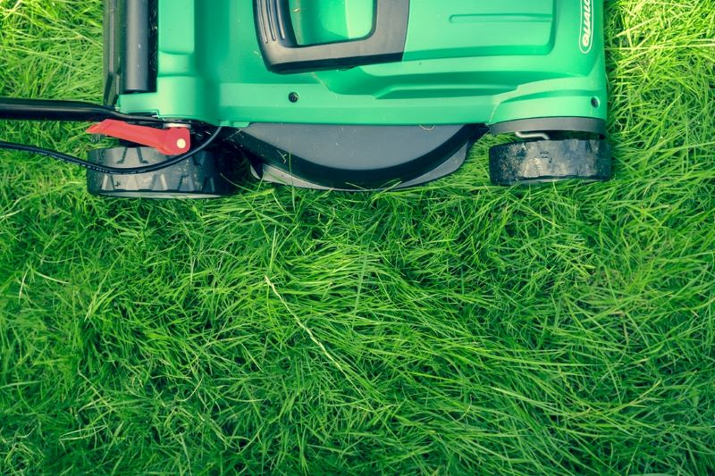 The Green Goddess 7 Summer Lawn Care Tips for a Lush Landscape