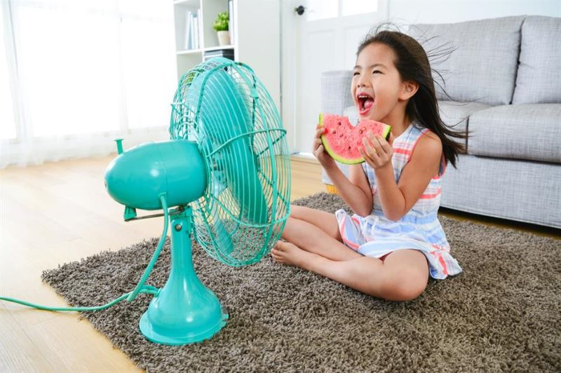 Tricks to Cool Your Home in Summer Days