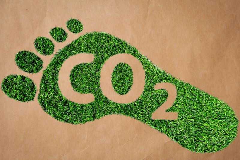 Reduce Your Carbon Footprint 7 Creative Ways to Help Your Cause